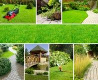 Gartencollage Stockfoto