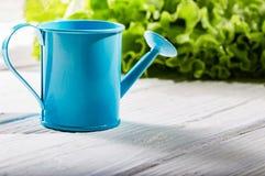 Gartengießkanne auf weißen Brettern gegen Grüns Lizenzfreie Stockfotos
