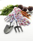 Gartenhandhilfsmittel und -handschuhe Lizenzfreies Stockbild