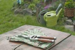 Gartenhandschuhe und -klipper im Garten stockbild