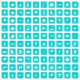 100 Gartenikonen stellten Schmutz blau ein Stockbild