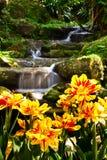 Gartenlandschaft mit Fluss Lizenzfreie Stockbilder