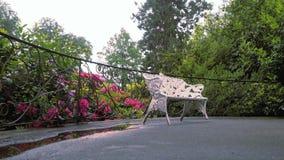Gartenlandschaft mit Holzbank und Rhododendronblumen Stockfotos
