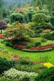 Gartenlandschaftsgestaltung Stockfoto