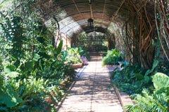 Gartenlaube Lizenzfreies Stockfoto