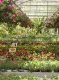 Gartenmitte Stockfoto