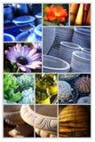 Gartenmitte Stockfotografie