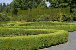 Gartenmusterdesign Stockfotografie