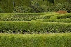 Gartenmusterdesign Stockbild
