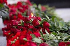 Gartennelke blüht Symbol von Trauer - Kerze im Wind und in der roten Blume auf dem Monument, Abschluss oben Lizenzfreie Stockfotografie