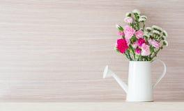 Gartennelken bei der Bewässerung Lizenzfreie Stockbilder