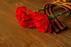 Gartennelken-Blumen und George Ribbon auf abstraktem hellem Hintergrund Siegtag - 9 Jubiläum 70 Jahre Lizenzfreies Stockfoto
