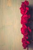 Gartennelkenblumen und George Ribbon-Nahaufnahme auf einem dunklen Hintergrund Siegtag - 9 Jubiläum 70 Jahre Stockfotografie