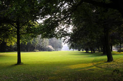 Gartenpark Lizenzfreies Stockbild