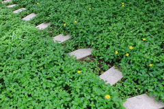Gartenpfad Lizenzfreie Stockfotografie