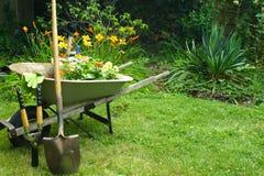 Gartenportraits Stockbild