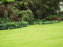 Gartenrasen Stockfotografie