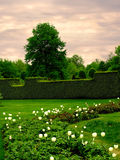 Gartenraum Stockfotos