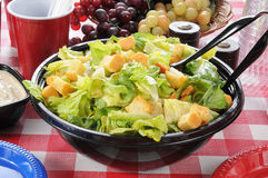Gartensalat auf einer Picknicktabelle Lizenzfreie Stockfotos