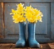Gartenschuhe mit Frühlingsblumen Lizenzfreie Stockfotos