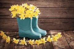 Gartenschuhe mit Frühlingsblumen Stockfoto