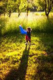 Gartenschwingen Stockfotografie