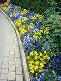 Gartensteinpfad und -blumen Stockbilder