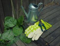 Gartenstillleben mit Gießkanne und Handschuhen Lizenzfreies Stockfoto