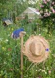 Gartenszene Stockbild