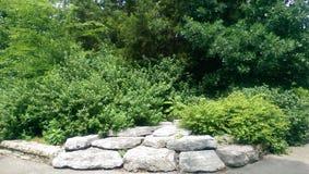 Gartenszene Stockbilder