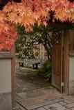 GartentorEingang mit Ahornholz Stockbilder