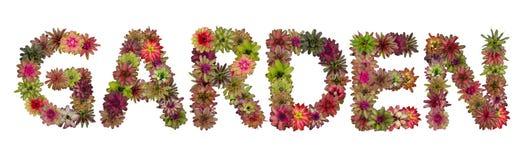 Gartenversalienbuchstaben Lizenzfreies Stockfoto