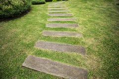 Gartenweg mit dem Gras, das zwischen dem hölzernen heranwächst Stockfotografie