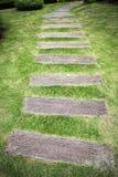 Gartenweg mit dem Gras, das zwischen dem hölzernen heranwächst Lizenzfreies Stockfoto