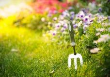 Gartenwerkzeug und -blume im Garten Lizenzfreies Stockfoto
