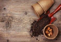 Gartenwerkzeuge, Torftöpfe, Boden, pflanzen die Birnen für das Pflanzen Lizenzfreies Stockfoto