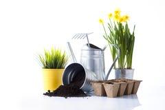 Gartenwerkzeuge und Gartenblumen Lizenzfreies Stockfoto