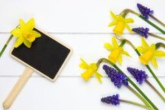 Gartenzeichen- und -frühlingsblumen Stockbild