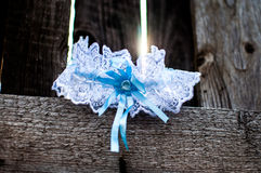 Garter. On a wooden fence Stock Photo