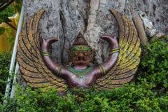 Garuda в джунглях стоковые фото