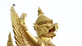 Garuda Stock Foto's