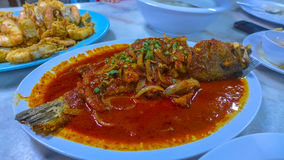 Garuppa spicy sos. This garuppa very famous in south east asia for spicy cooking stock photography