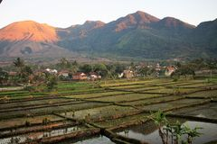 Natural Landscape in Garut, West Java - Indonesia. Garut sundanis in West Java in Indonesia, very beautiful, rice fields and surrounded by mountains, the air is stock images