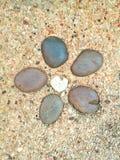 Garvel rock ground. Five rocks on ground stock image