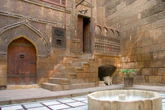 Gary Anderson hus, Cairo Arkivbild