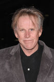 Gary Busey Royalty Free Stock Image
