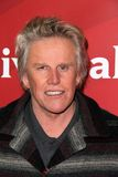 Gary Busey. At NBCUniversal's 2013 Winter TCA Tour, Langham Hotel, Pasadena, CA 01-06-13 Stock Photo