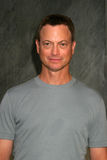 Gary Sinise Royalty Free Stock Images