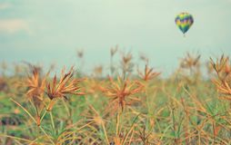 The gas balloon across the prairie Royalty Free Stock Photos