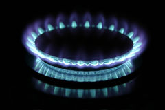 Gas Burner. Blue gas flame on stove royalty free stock photo